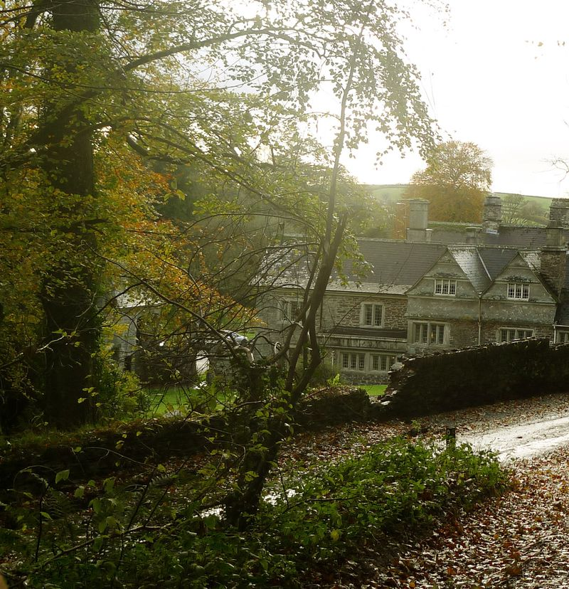 Lewtrenchard in the trees