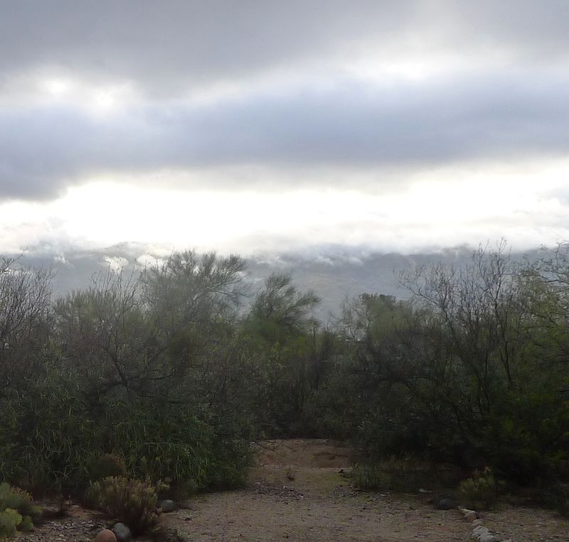 Rincon Mountains in rain
