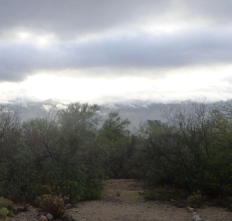 Rincon Mountains in rain