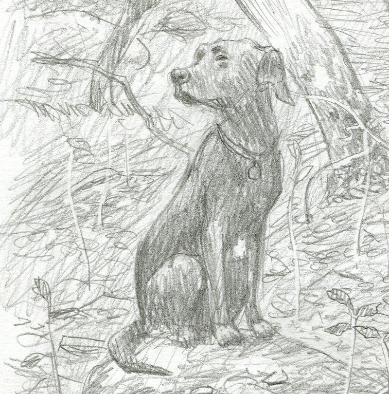 Tilly sketch by David Wyatt