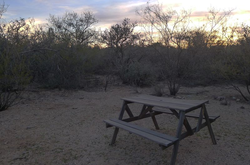 Picnic table by the wash, early evening