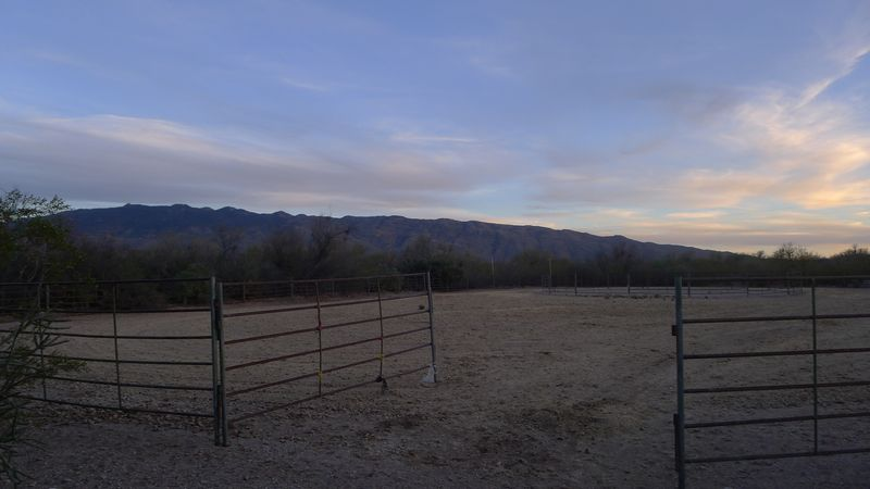 By the back corral, early evening.