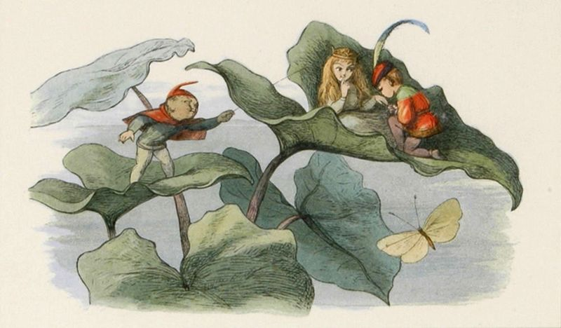 Illustration by Richard Doyle