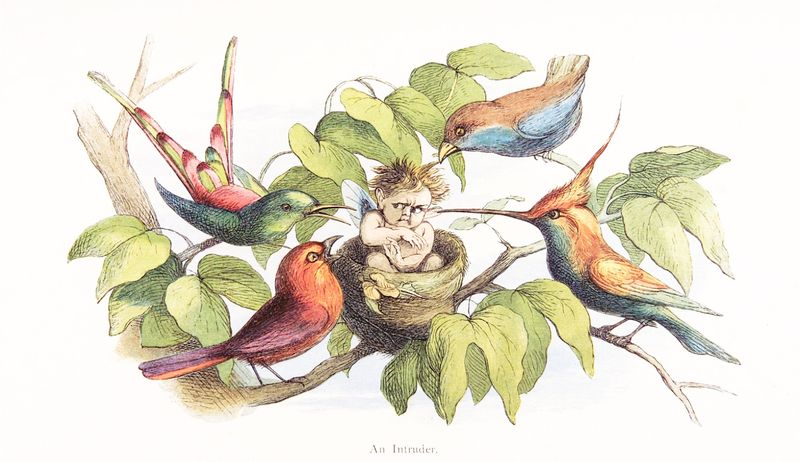 In Fairyland, an Intruder by Richard Doyle