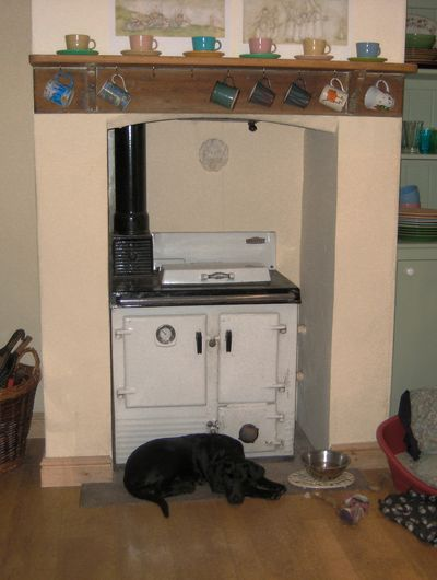Tilly warming herself by the hearth
