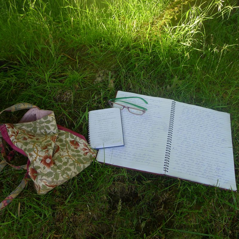 Notebooks in the grass