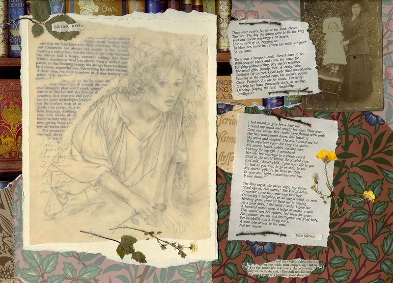 Briar Rose by Terri Windling
