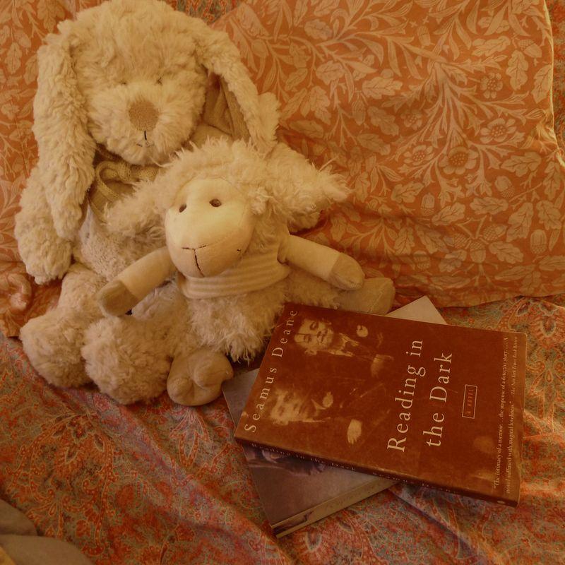 Books, bunny, and sheep