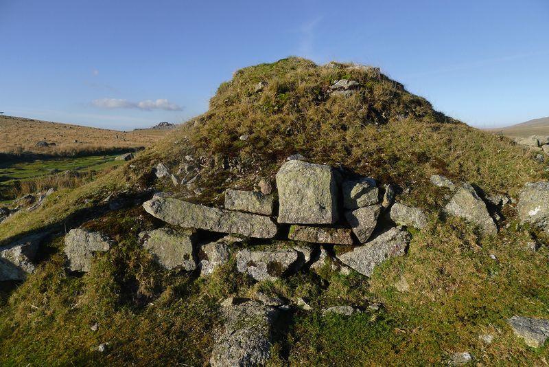 Dartmoor walk 5