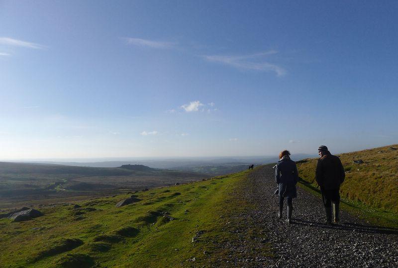 Dartmoor walk 7