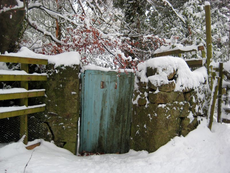 Blue gate, winter