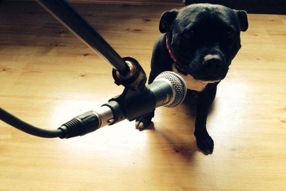 Doris at the mic