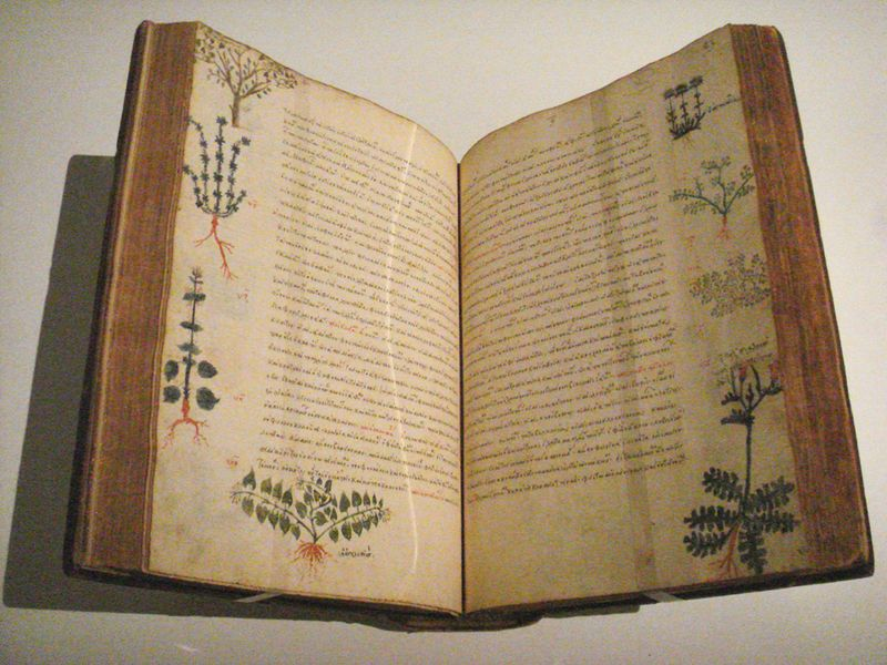 A 15th century herbal