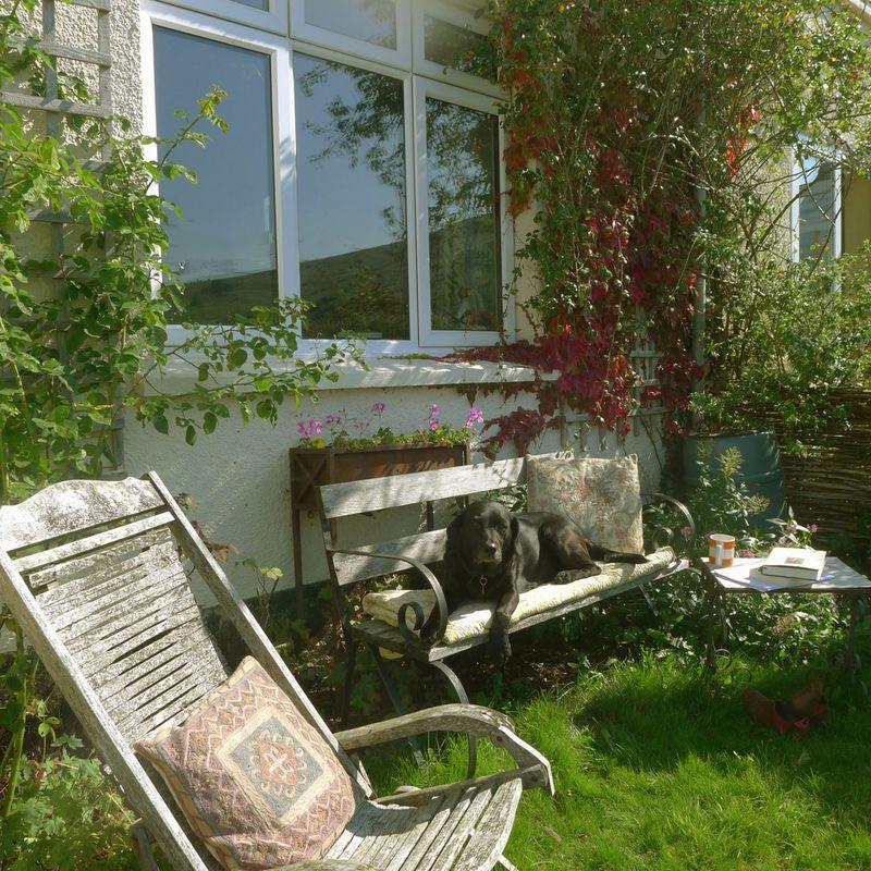 The front garden bench, September.