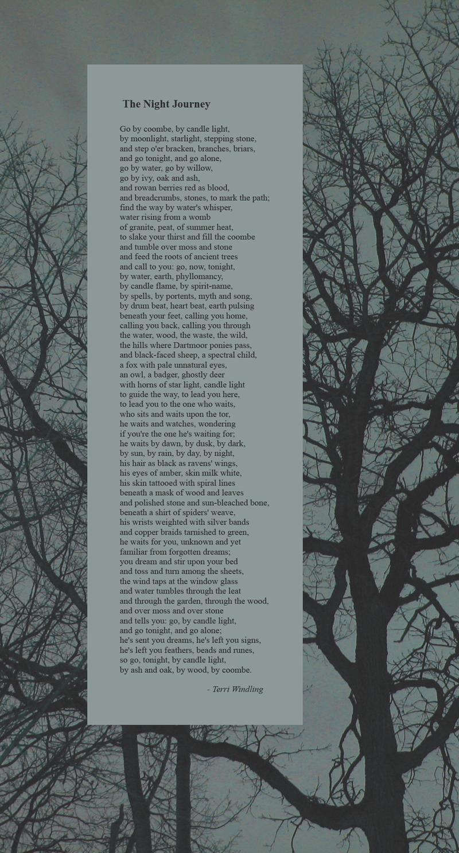 The Night Journey by Terri Windling