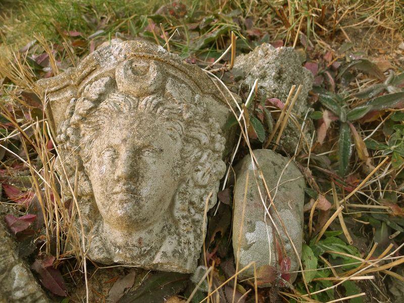 Among the stones