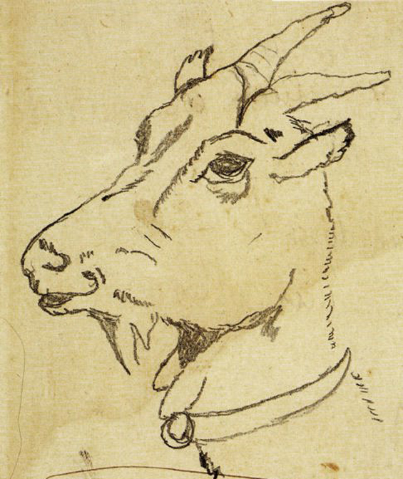 Goat sketch by Diego Rivera