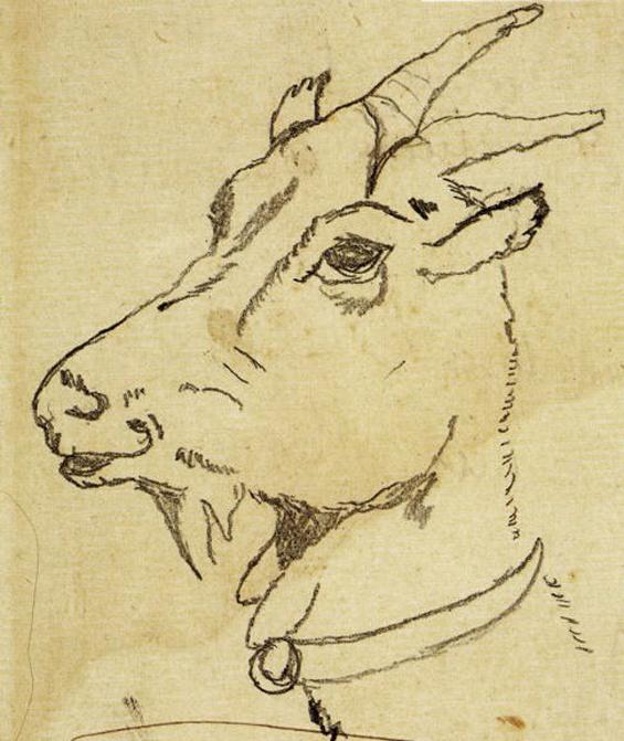 Goat sketch by Diego Rivera
