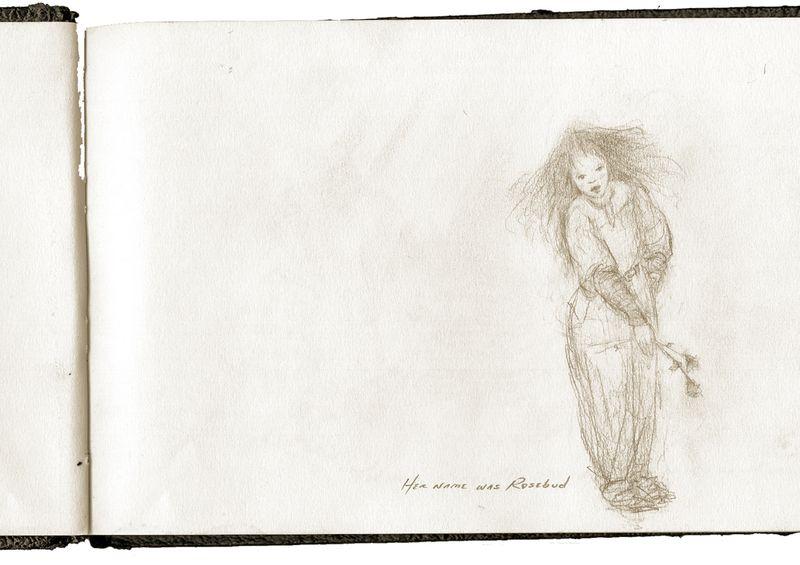 sketch, Terri Windling