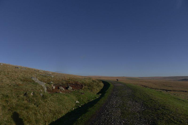 Dartmoor walk 8