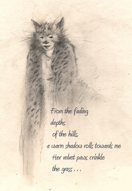 Bobcat_t_windling